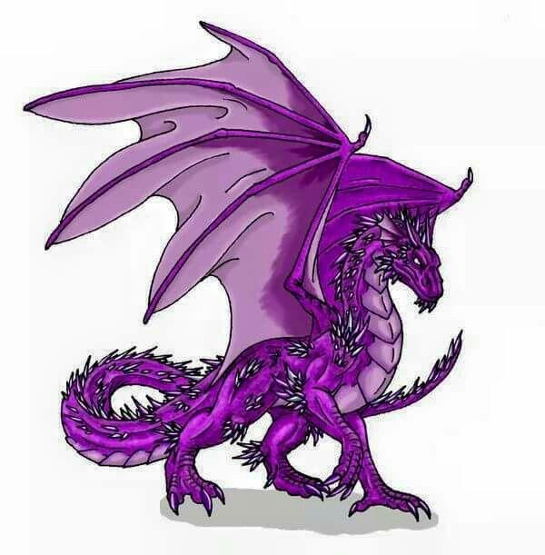 Pingl par paula irwin sur dragons dragons and more - Dessin dragon couleur ...