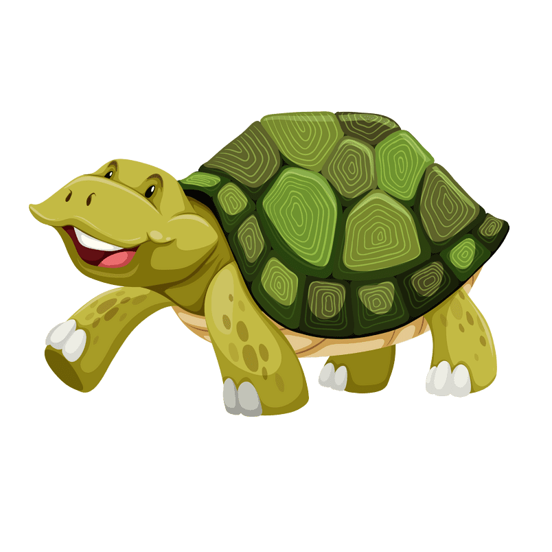 Cartoon Turtle Vector Turtle Png Image And Clipart Cartoon Turtle Cartoon Clip Art