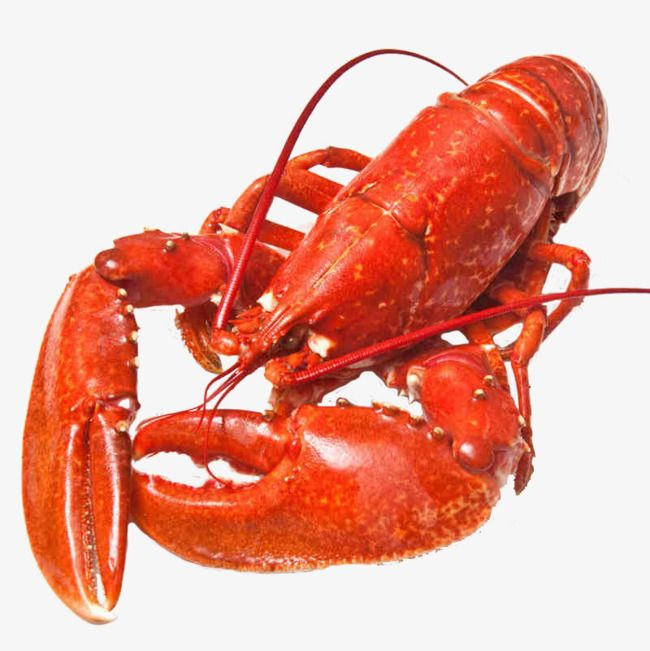 Red Lobster Seafood Lobster Red Png Transparent Clipart Image
