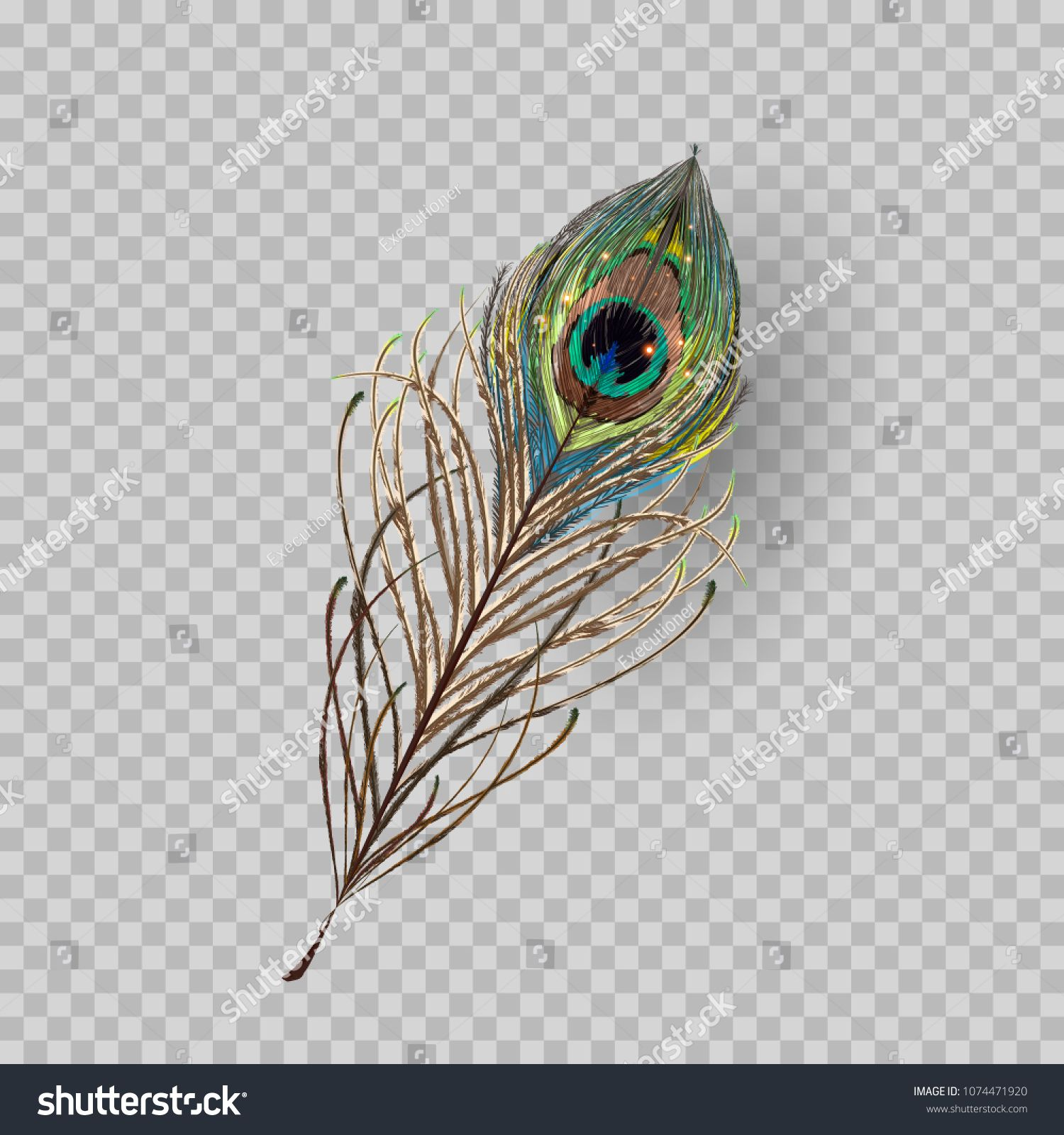 peacock feather on transparent background in realistic style vector illustrationtransparent background peac peacock images peacock feather baby cartoon drawing peacock feather on transparent