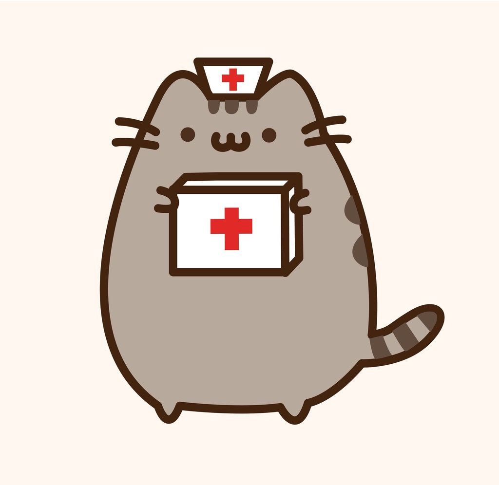 Pusheen Disaster Nurse Poradniki Pinterest Cats Pusheen Cat