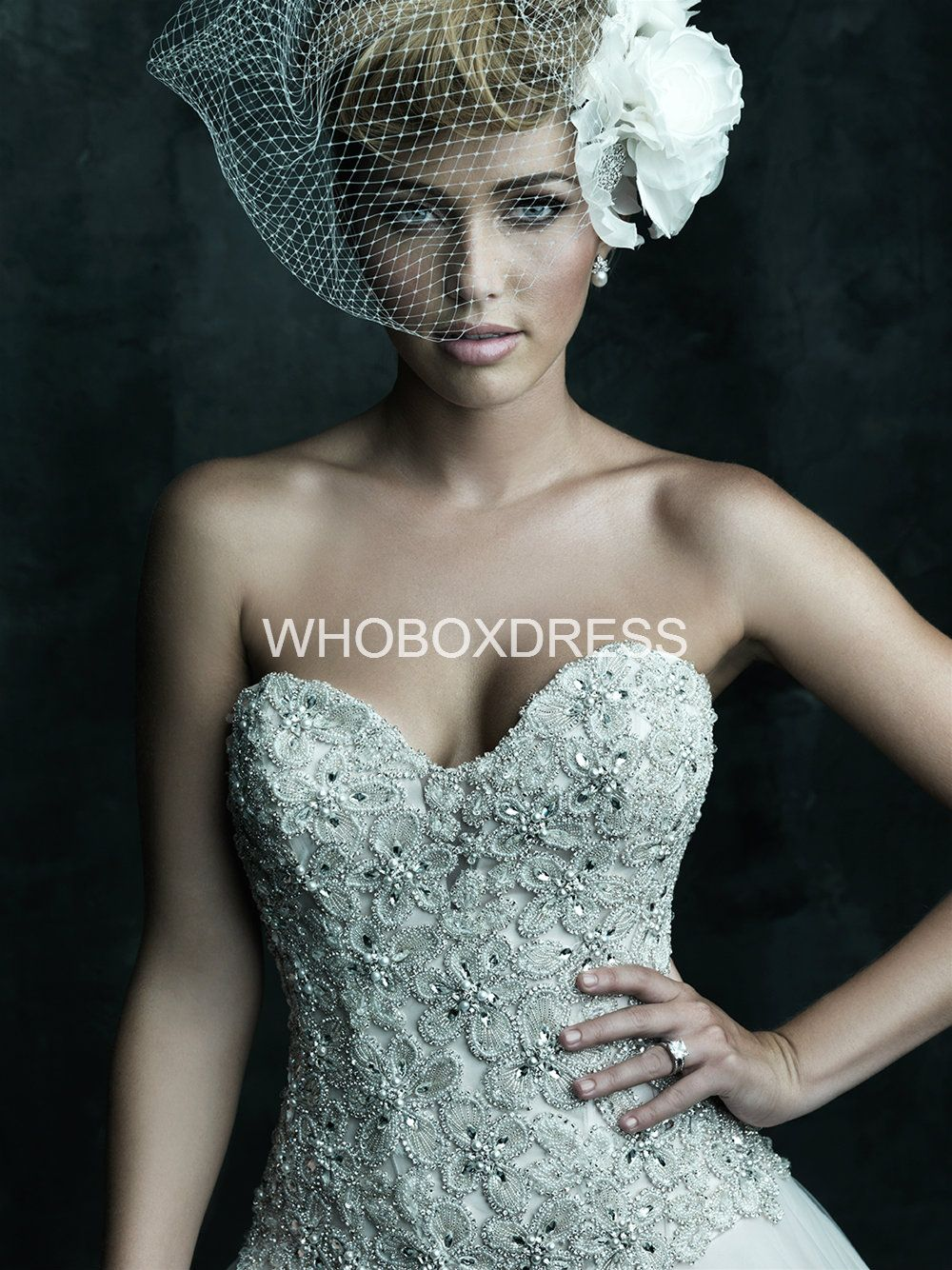 I am loving the bird cage look.. Instead of a traditional veil ...