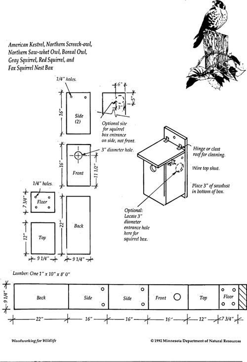 """kestrel/squirrel house pattern, out of one 8-foot 1x10"""" board"""
