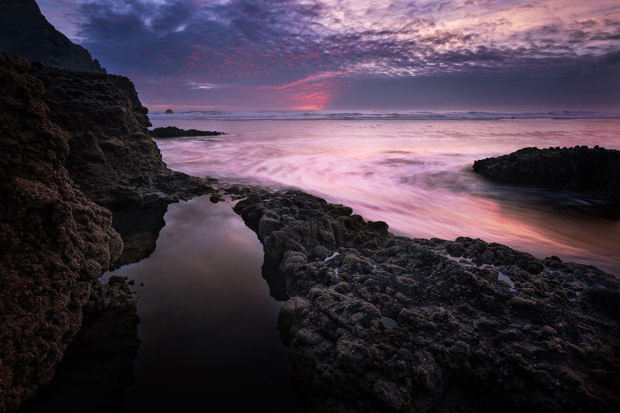 Piha Beach Rock Pool Rock Pools Beach Rocks Sky Color Sunset sea pink clouds coast rocks
