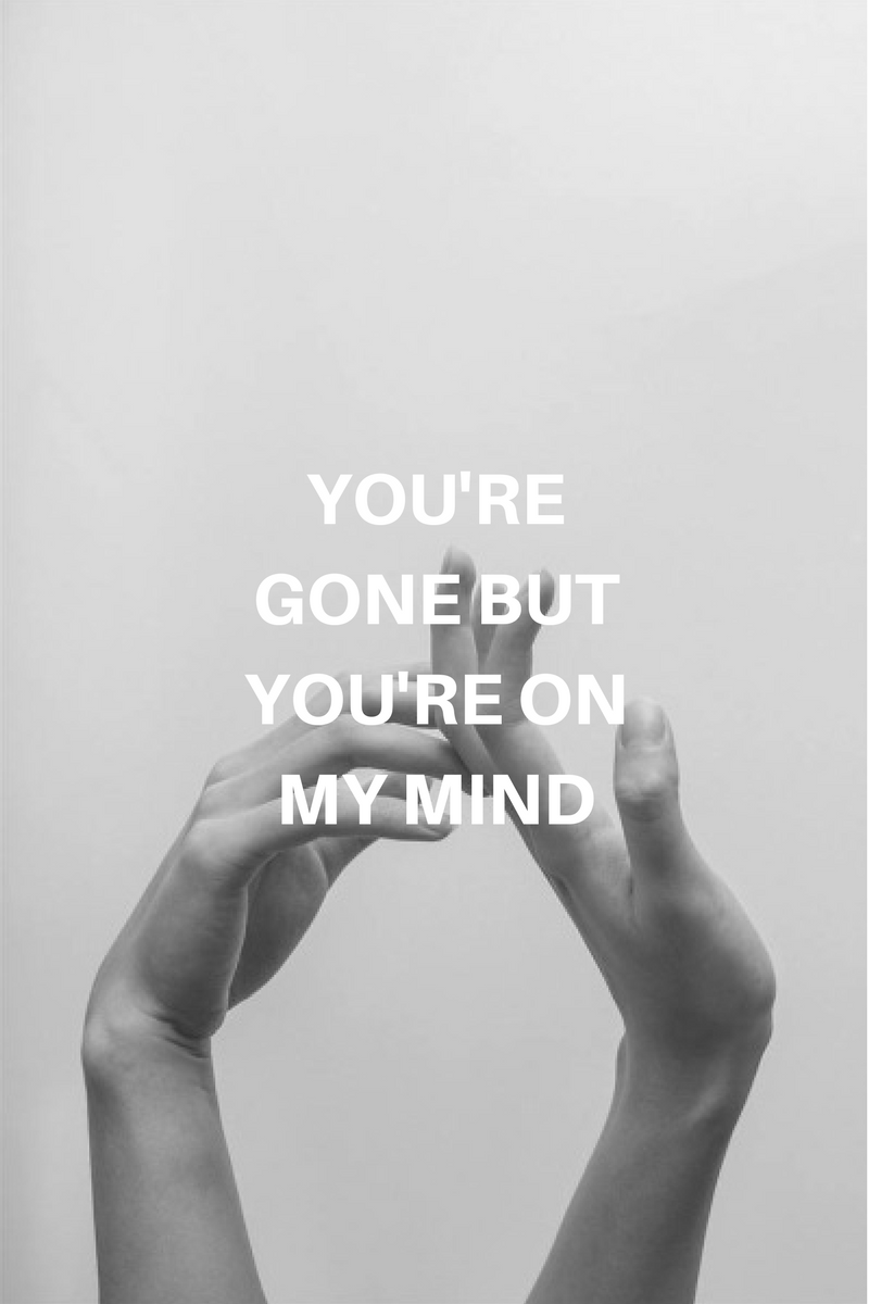 Agnes//Glass Animals Glass animals lyrics, Glass animals