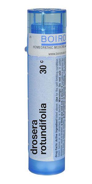 Drosera rotundifolia | Homeopathy | Homeopathic remedies