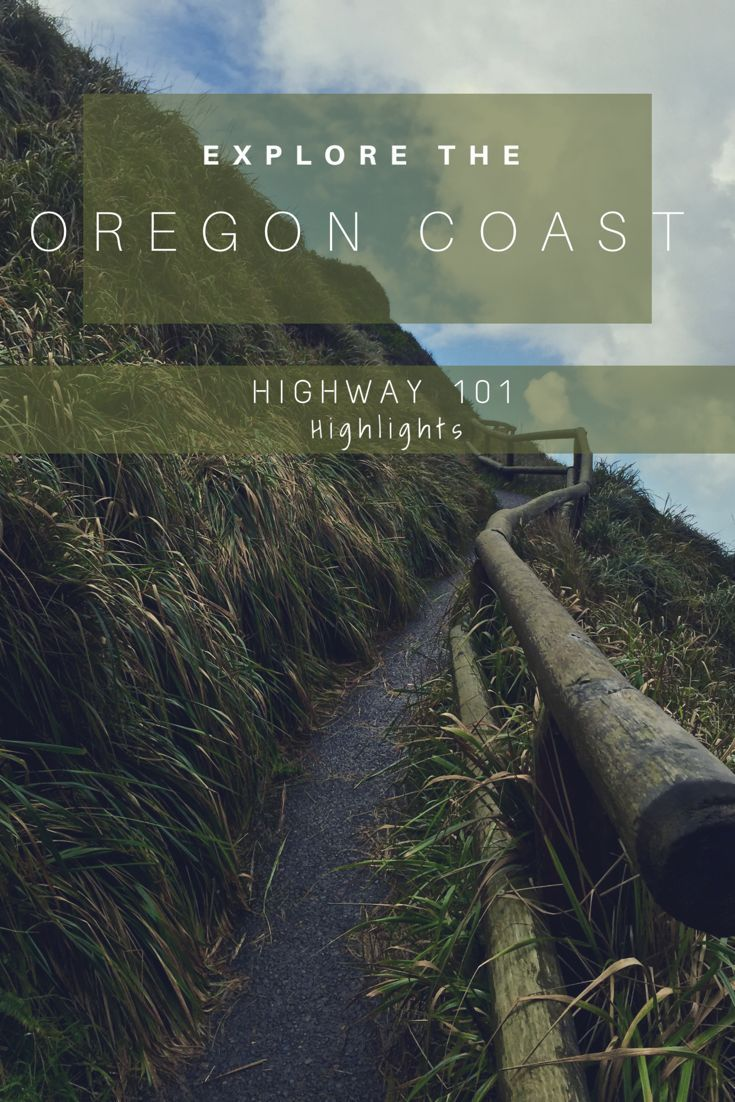 Oregon Coast: Must-See Stops & How They Could Kill You