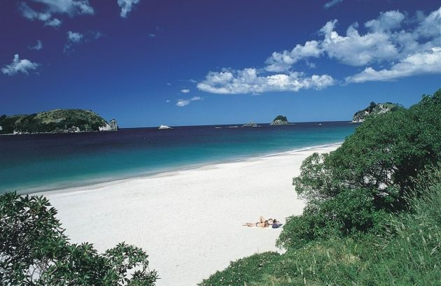 Hot water beach - New Zealand. I hear you can dig a hole and lie in the hot thermal water there