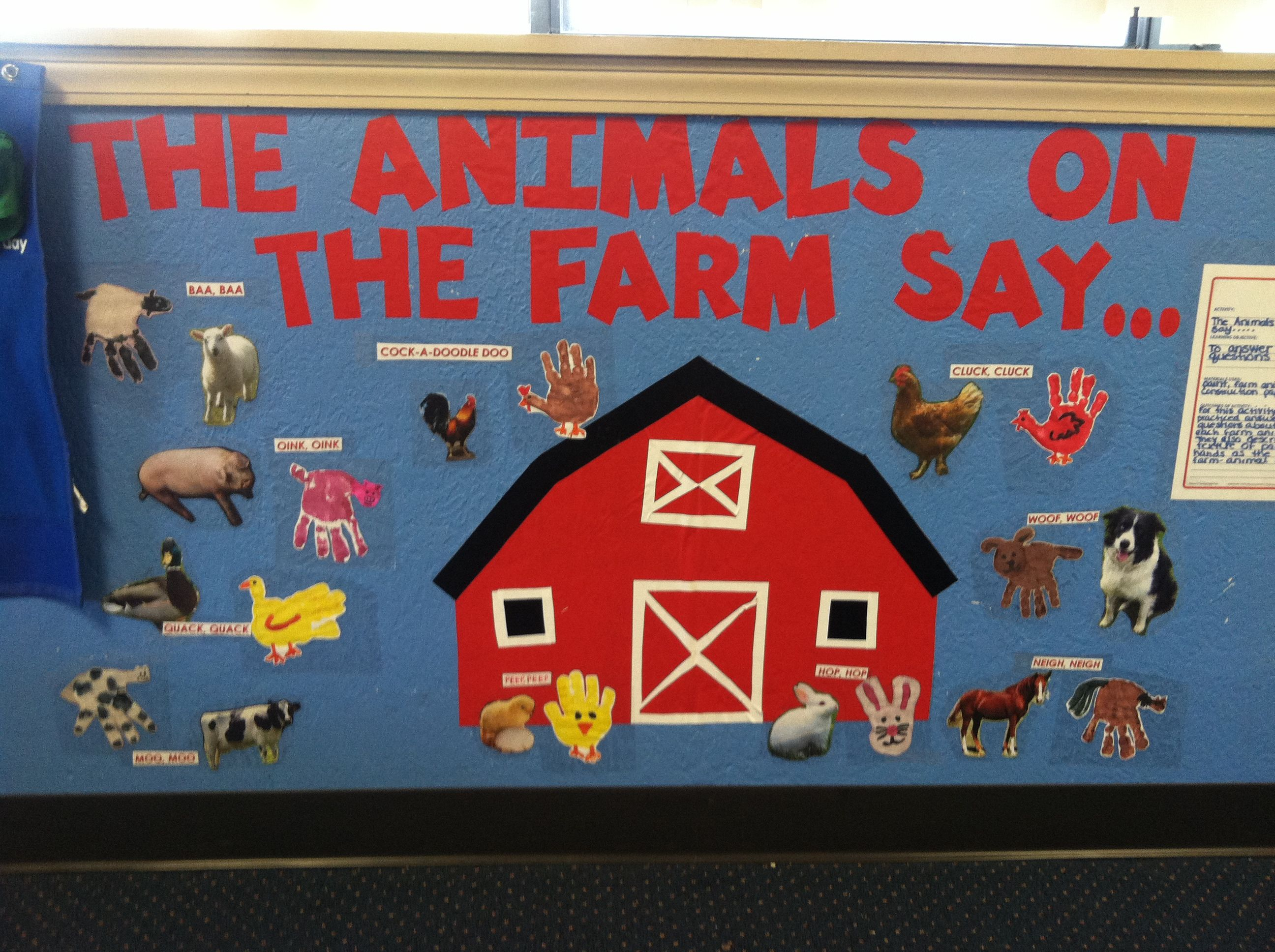Farm Animal Too Cute