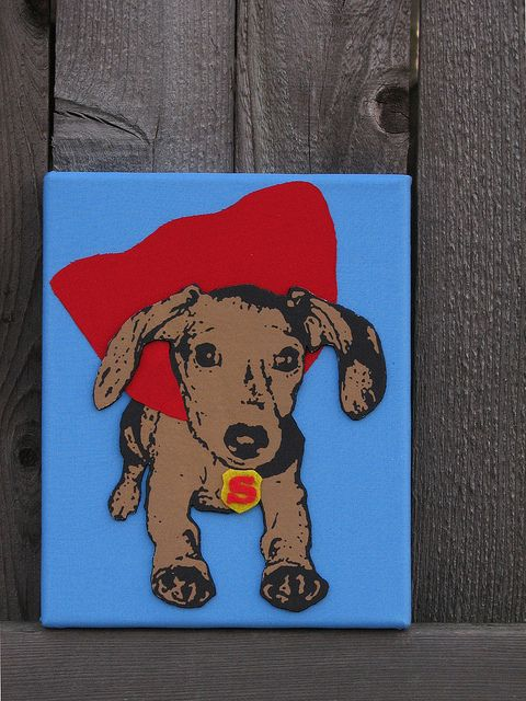 Super Doxie by taniamc, via Flickr