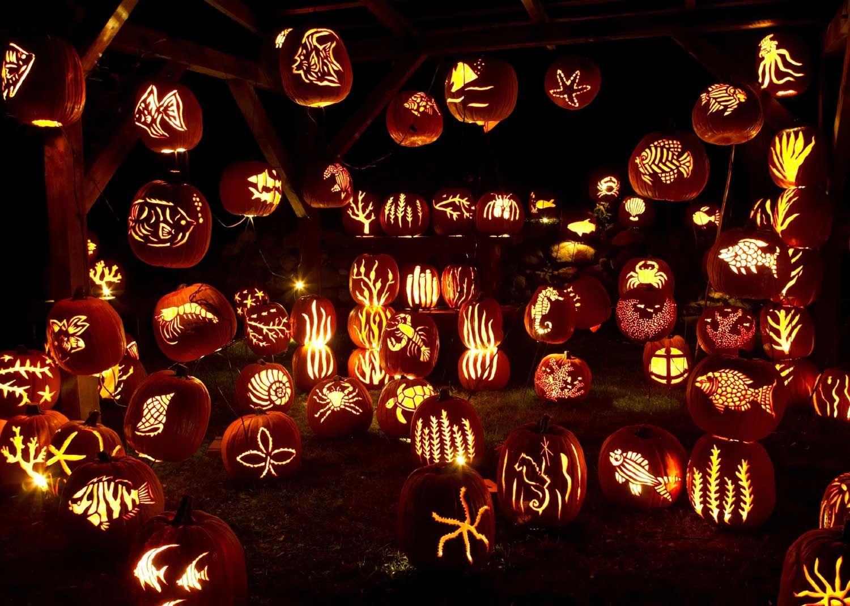 74 best floating pumpkin hanger possibilities images on
