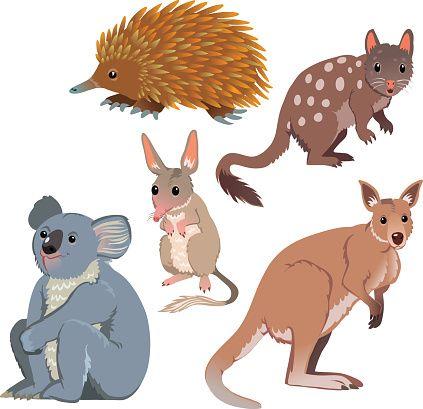 Clip Art Vector Images Illustrations Australian Animals Australian Wildlife Cute Animal Drawings