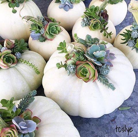 Simple Pumpkin Decorating Inspiration Autumn 2016 White