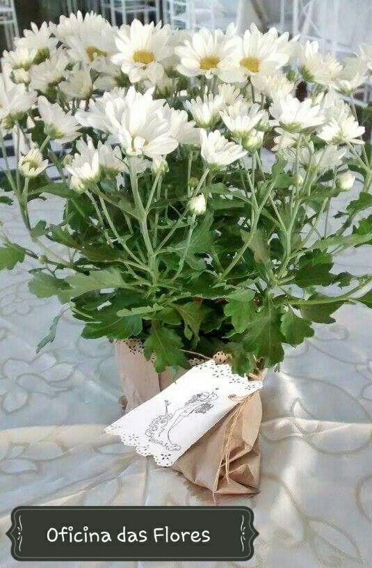 Decoração de casamento / noiva / wedding / flores / mimos /