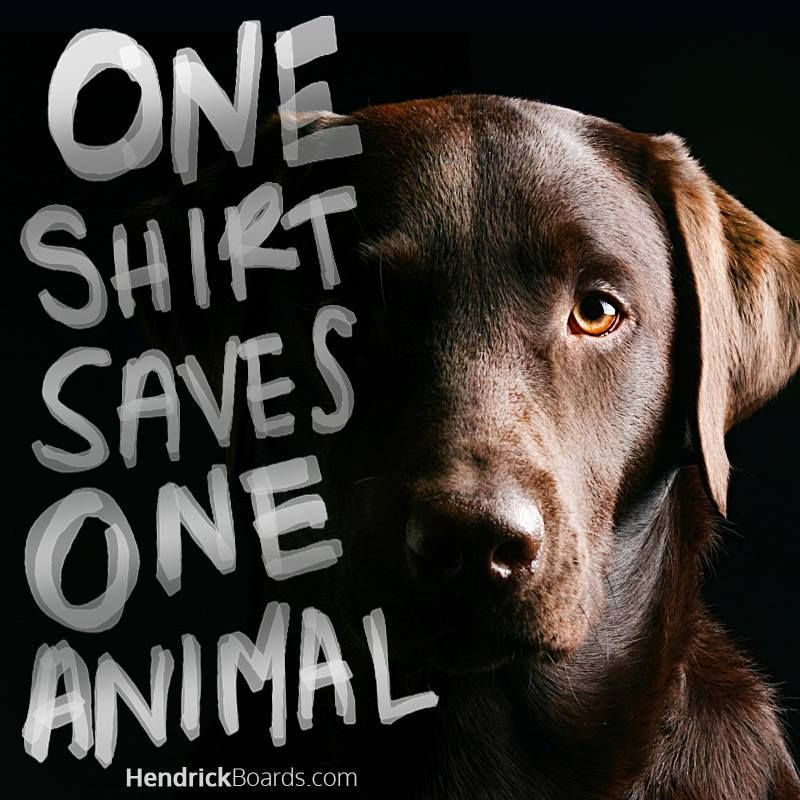 ONE SHIRT save ONE ANIMAL!  Join Hendrick Boards animal saving family! We support over 370 animal saving rescues, shelters and sanctuaries with every single shirt! ONE shirt triggers a $10.00 donation enough to feed and house a shelter animal in your local communities.