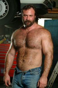 Sexy gay bears