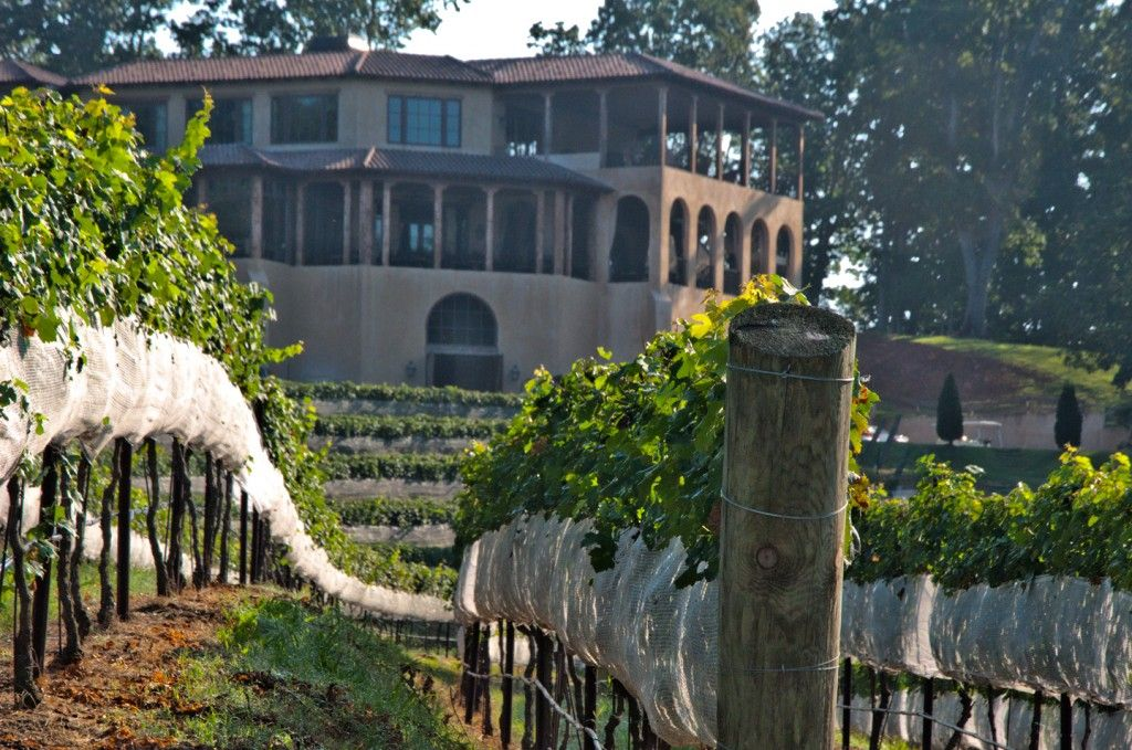 Montaluce Winery Amp Estates 946 Via Montaluce Dahlonega Ga