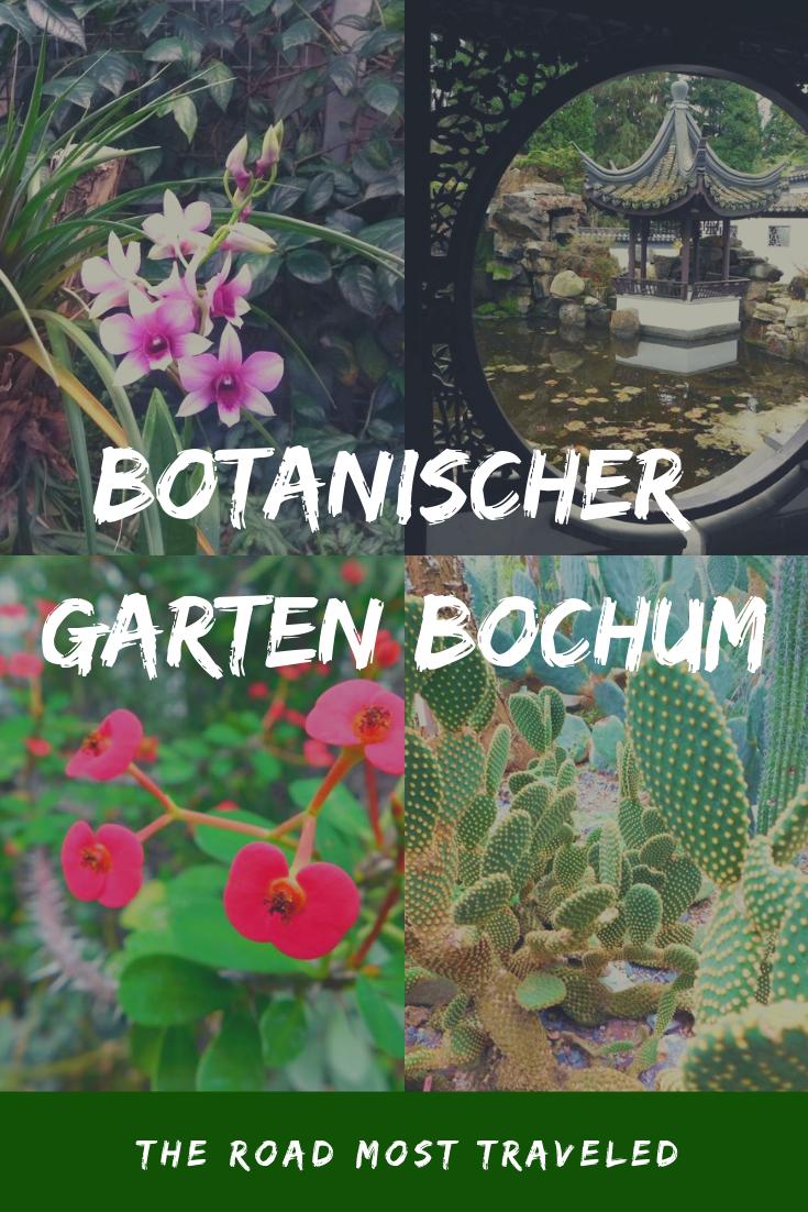 Botanischer Garten Bochum In 2020 Mit Bildern Botanischer Garten Bochum Botanischer Garten Bochum