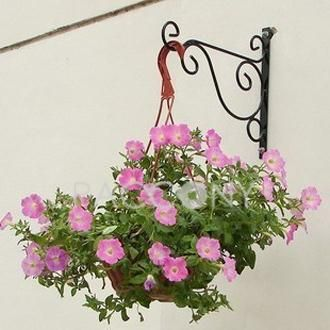 Http Www Paccony Com Product Wrought Iron Flower Shelf With