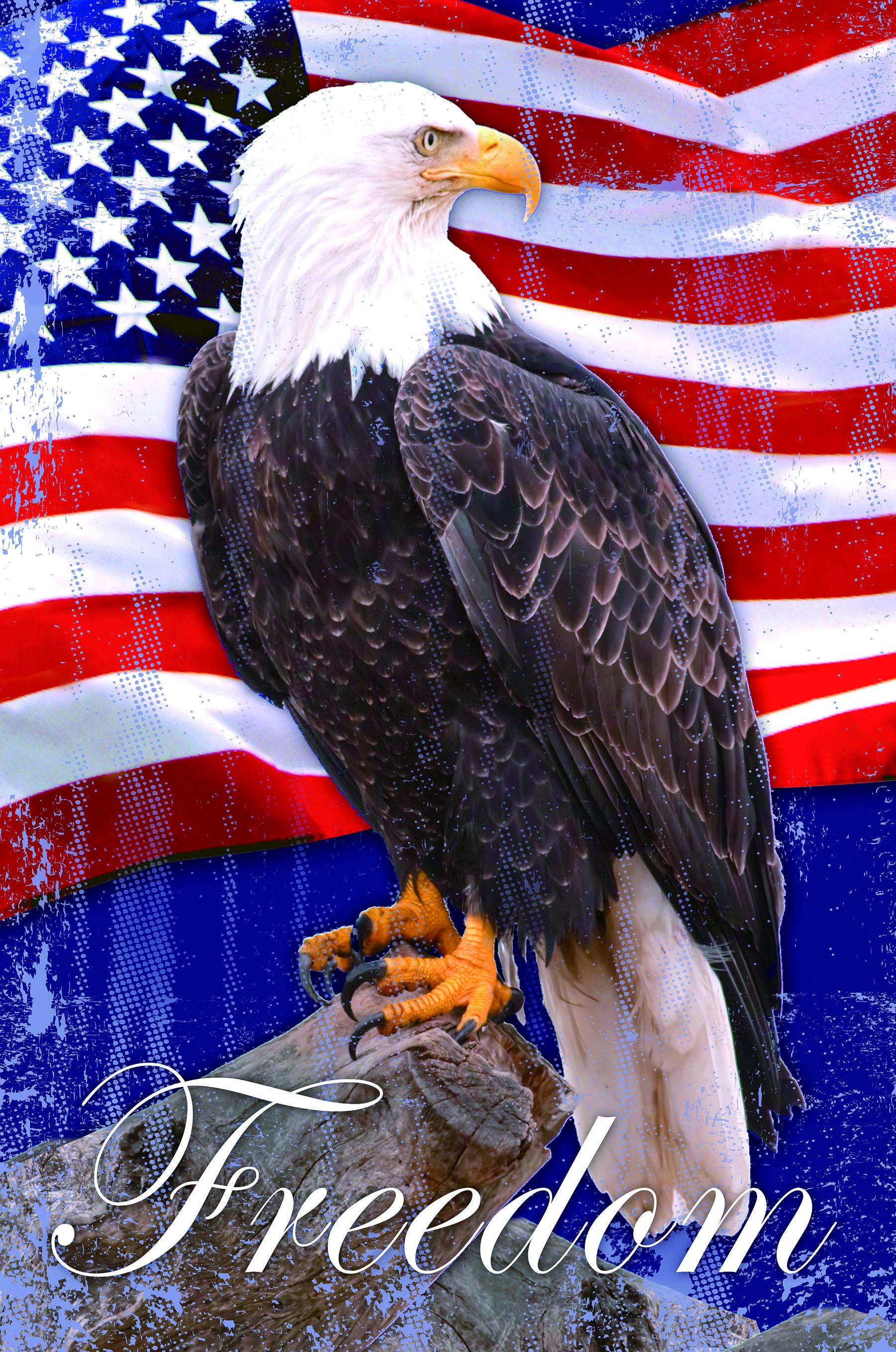 Freedom Bald Eagle Patriotic Outdoor House Flag 28 X 40 In 2021 American Flag Pictures American Flag Wallpaper American Flag Art