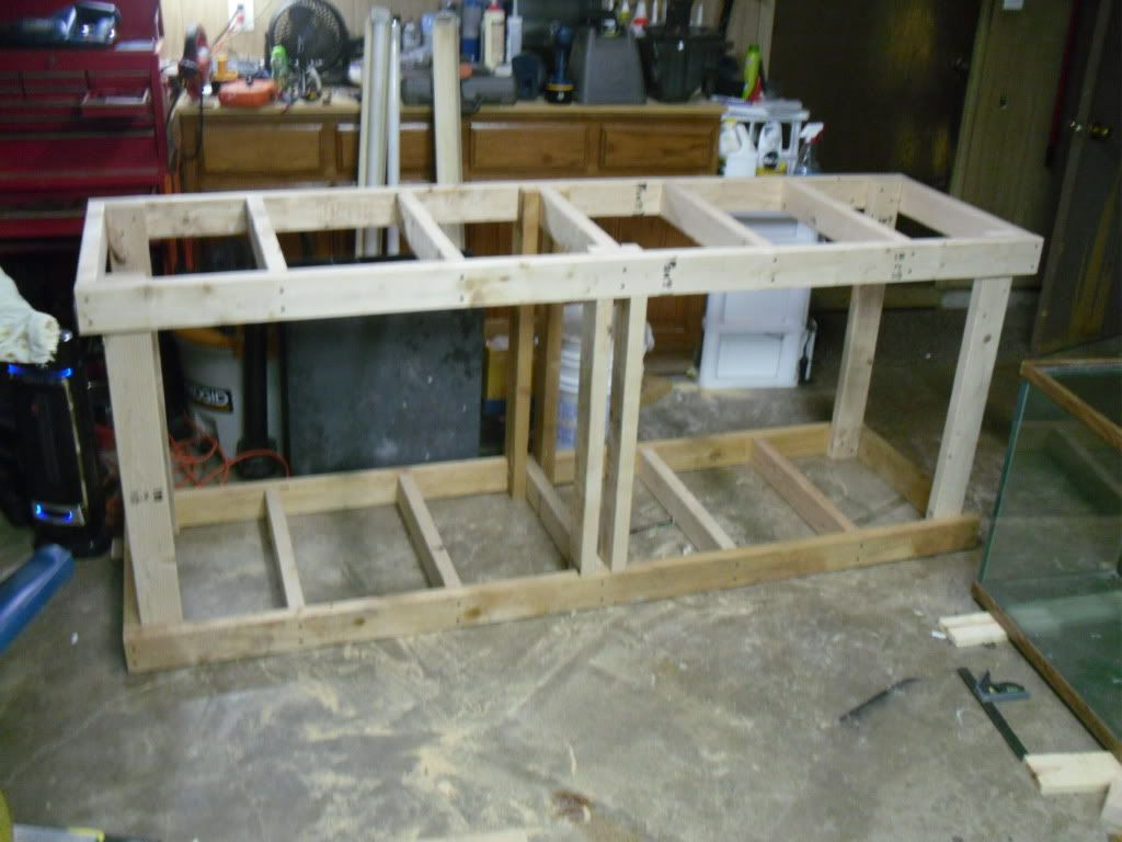 2x4 cabinet workshop pinterest cichlids for Cool things to build with 2x4s