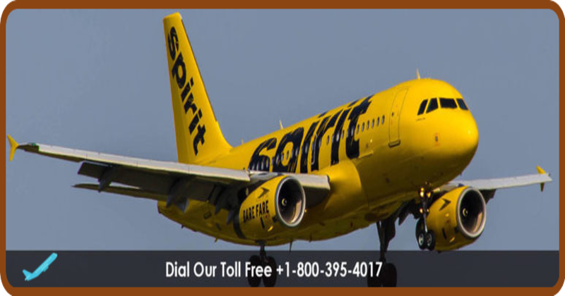 Spirit Airlines is one of the best airline company which