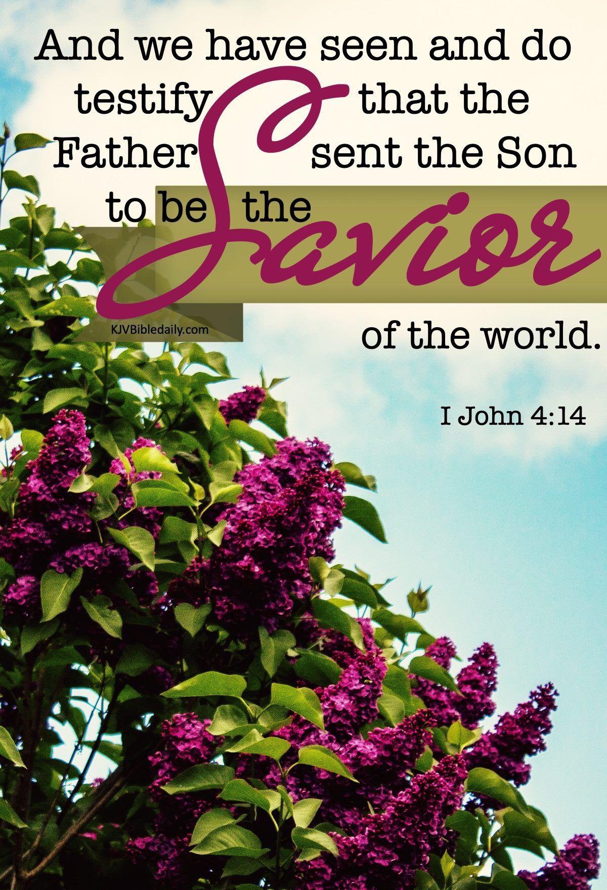 Pin on bible verses kjv