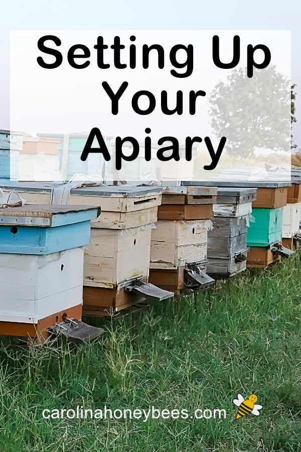 Pin on Beekeeping 101
