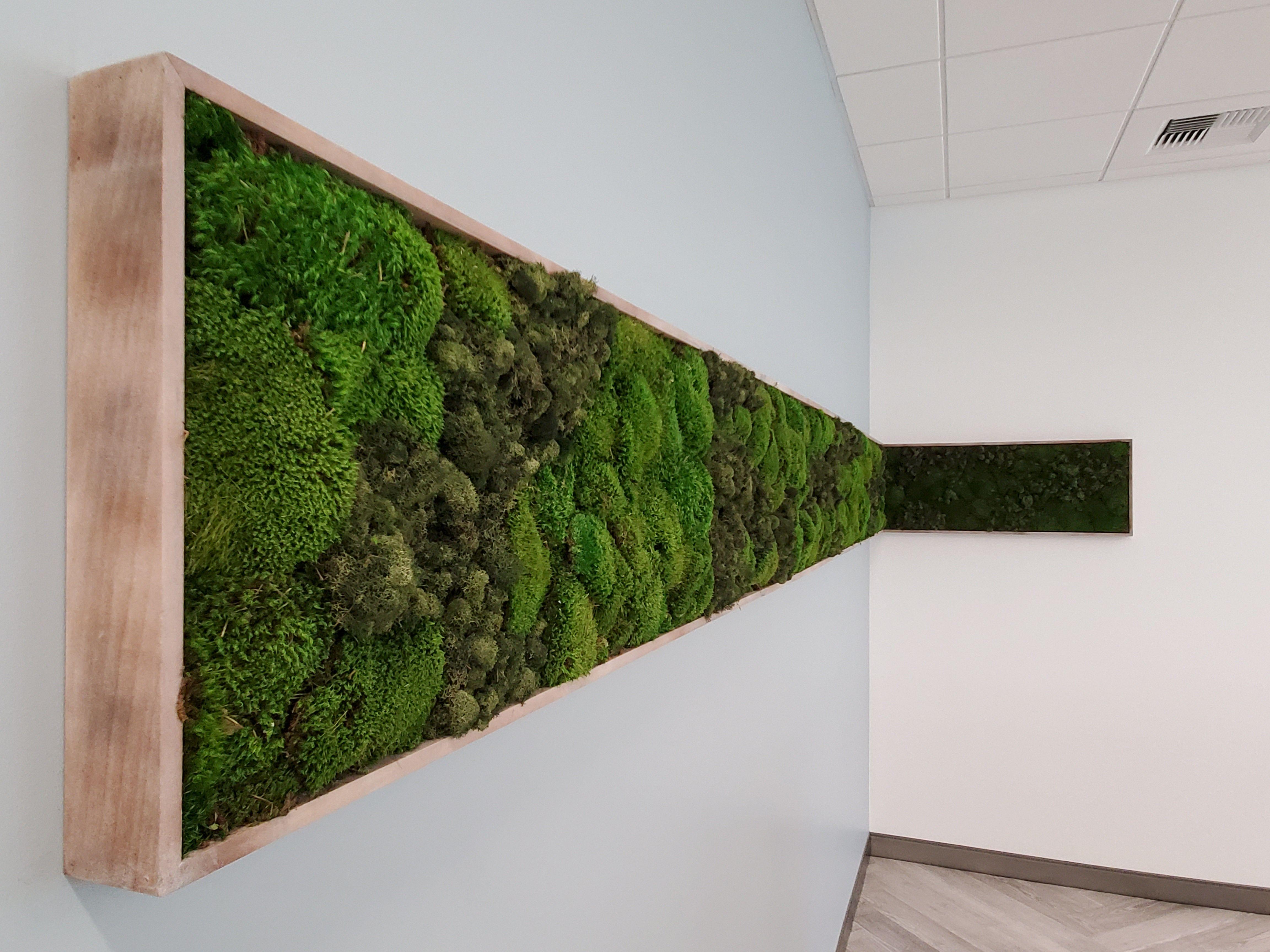 #plants #corporateinteriors #interiorarchitecture
