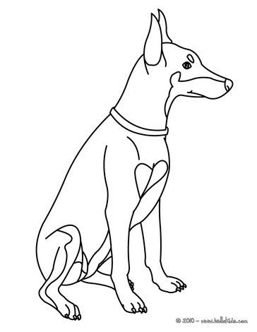 Doberman Coloring Page Nice Dog Drawing For Kids Looking For