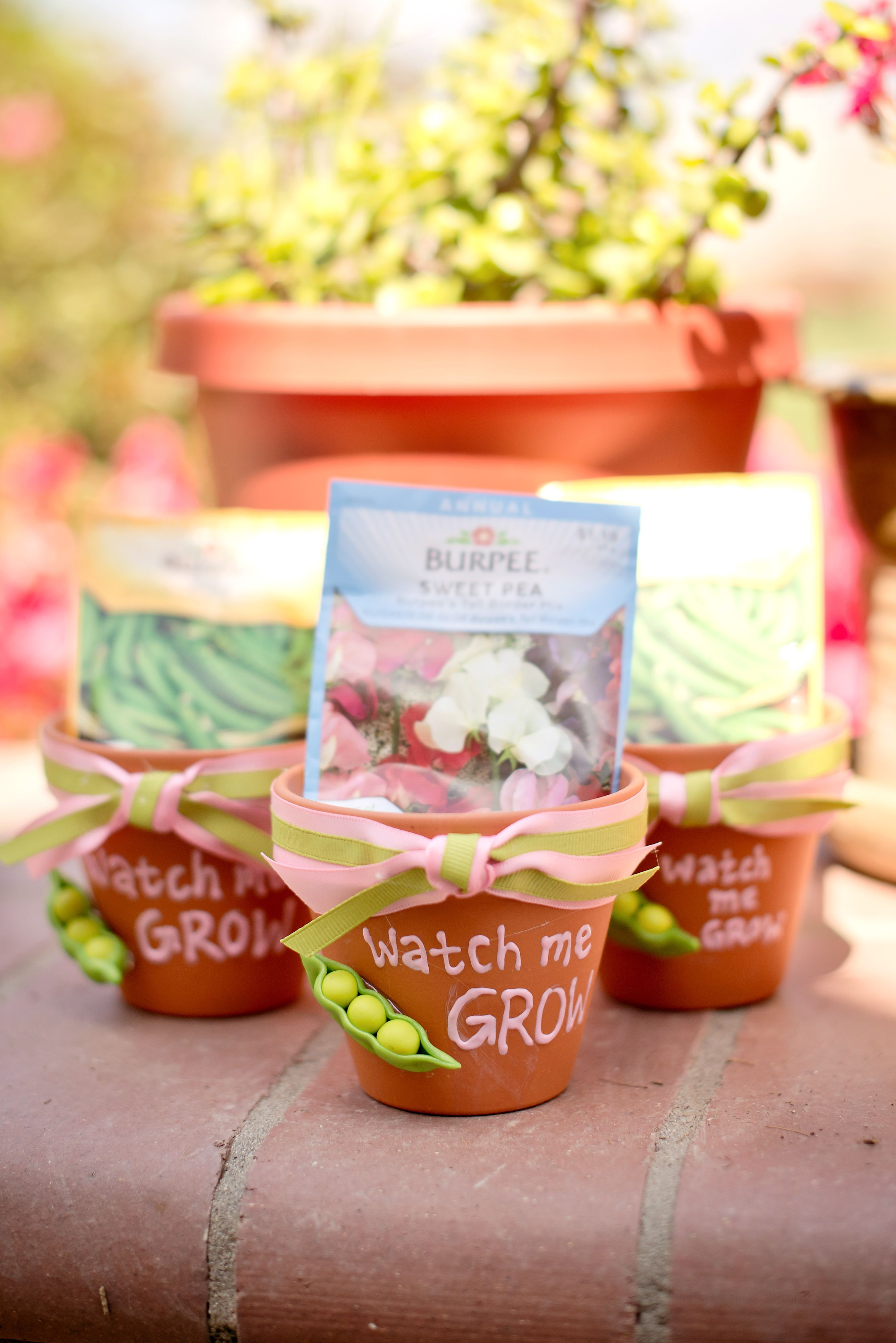 Baby Shower Favors And Prizes ~ Cute party favors for garden theme pink green parties or