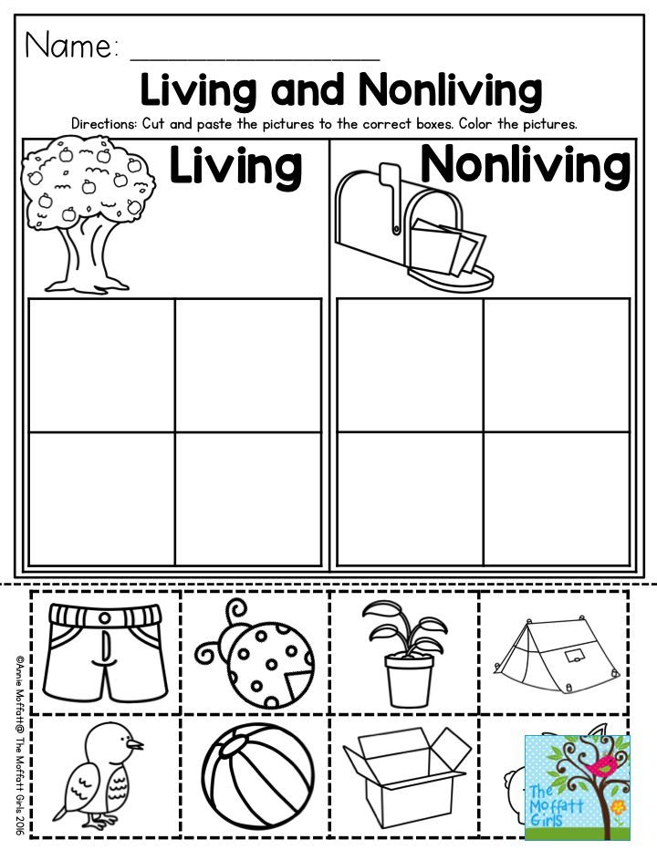 Living and Nonliving a great Preschool activity to help