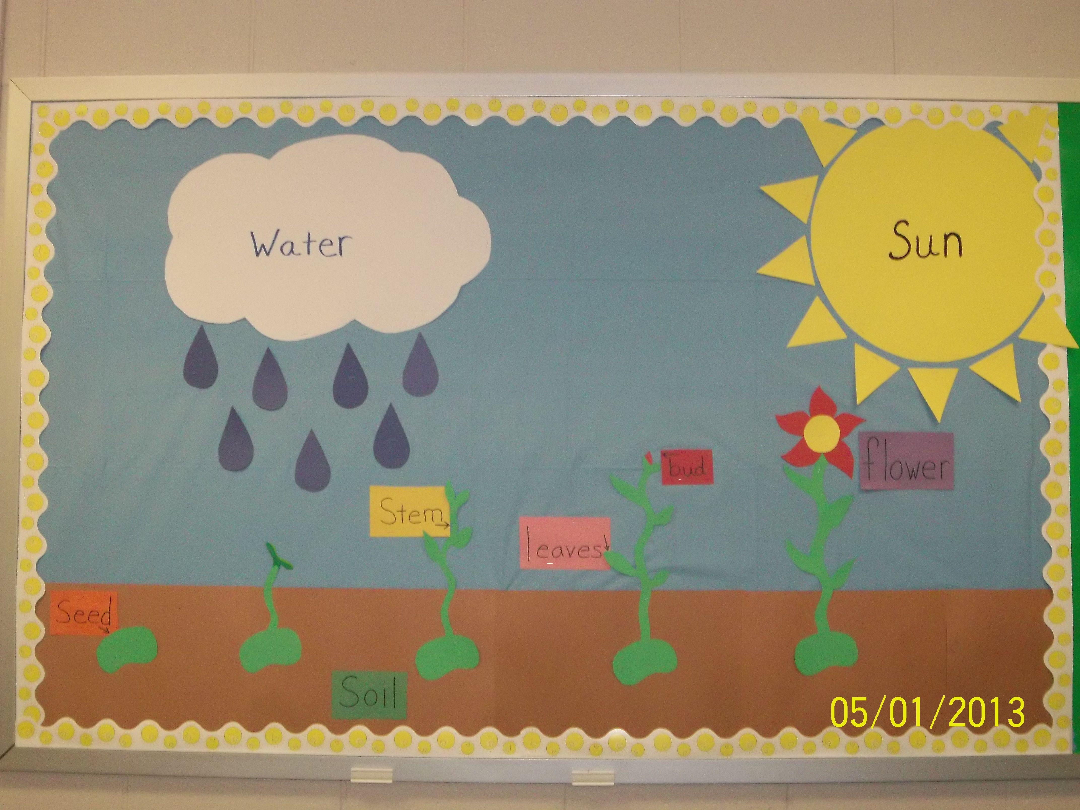 Plant Cycle Bulletin Board