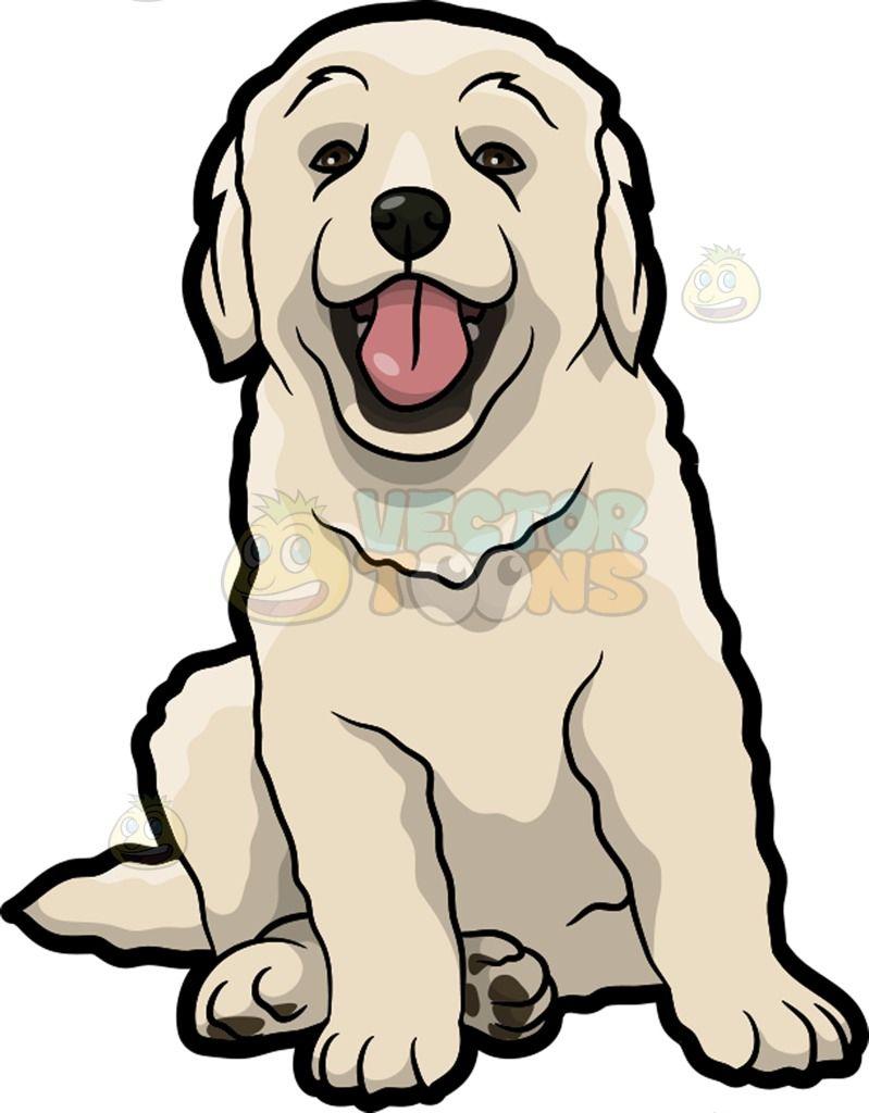 A Cute Golden Retriever Puppy With Images Golden Retriever