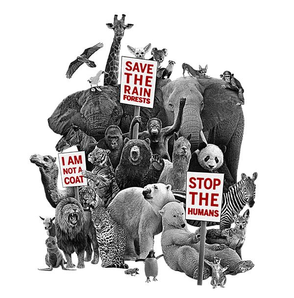 The Animal Rights Controversy Protest Art Animal Rights Animal Art