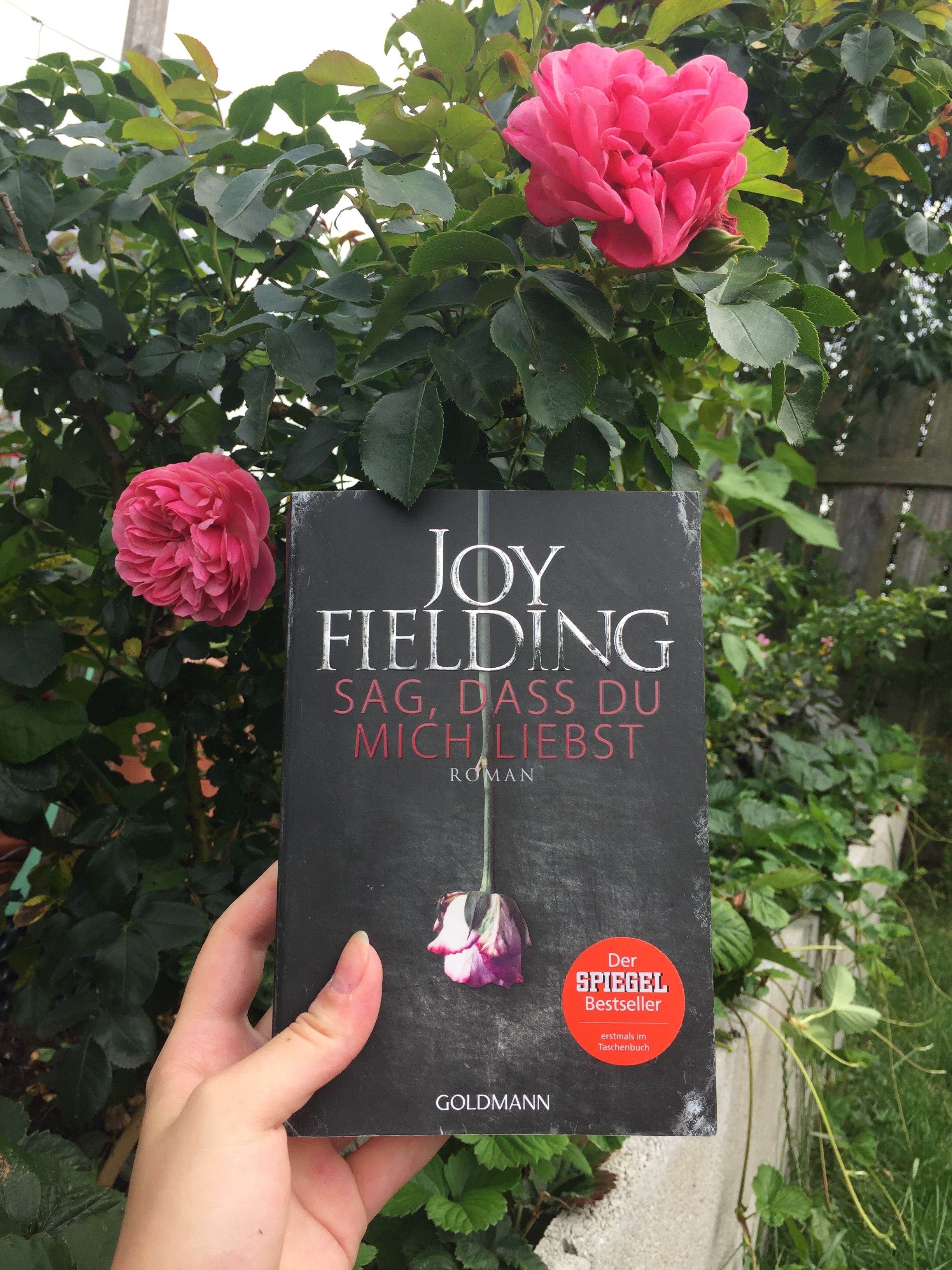Sag Dass Du Mich Liebst Joy Fielding Joy Fielding Romane Bucher