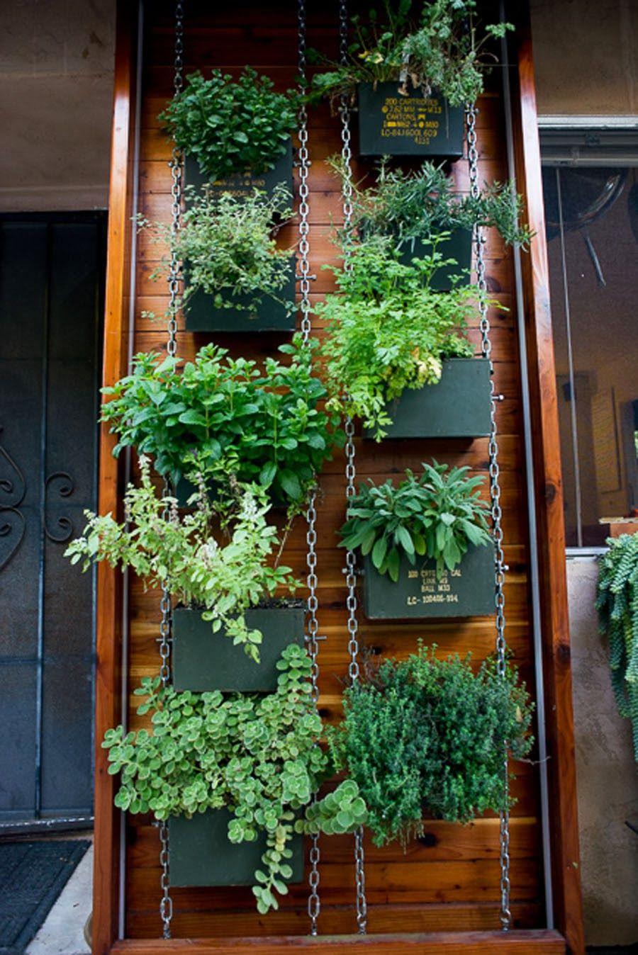 Paradis express jardins vertically gardened jard n - Plantas aromaticas jardin ...