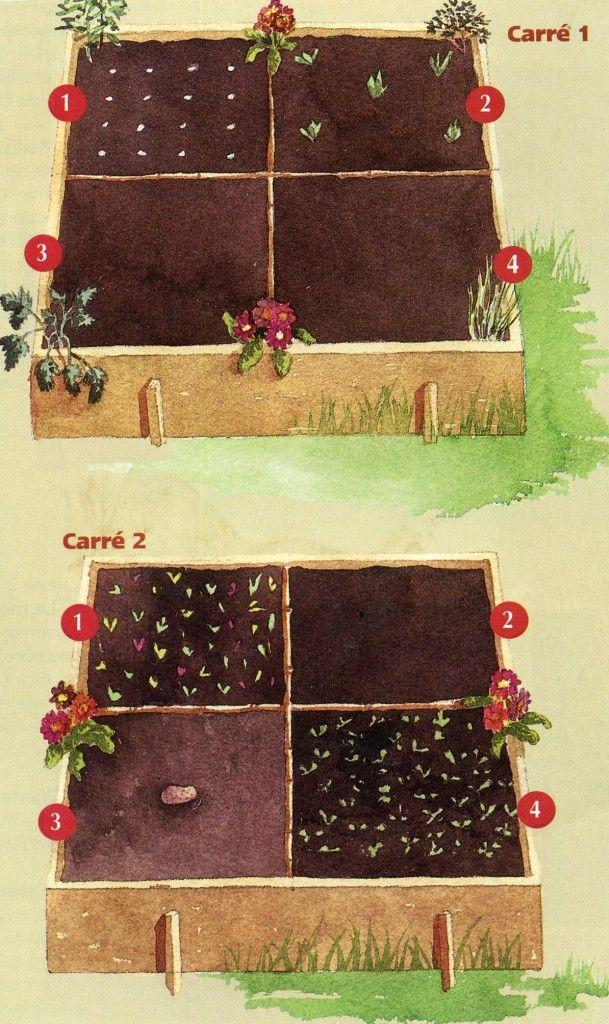 mini potager en mars jardinage potager mini potager. Black Bedroom Furniture Sets. Home Design Ideas