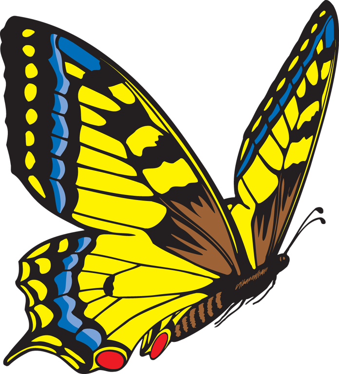 Yellow Butterfly Clipart | Clipart Panda - Free Clipart Images ...