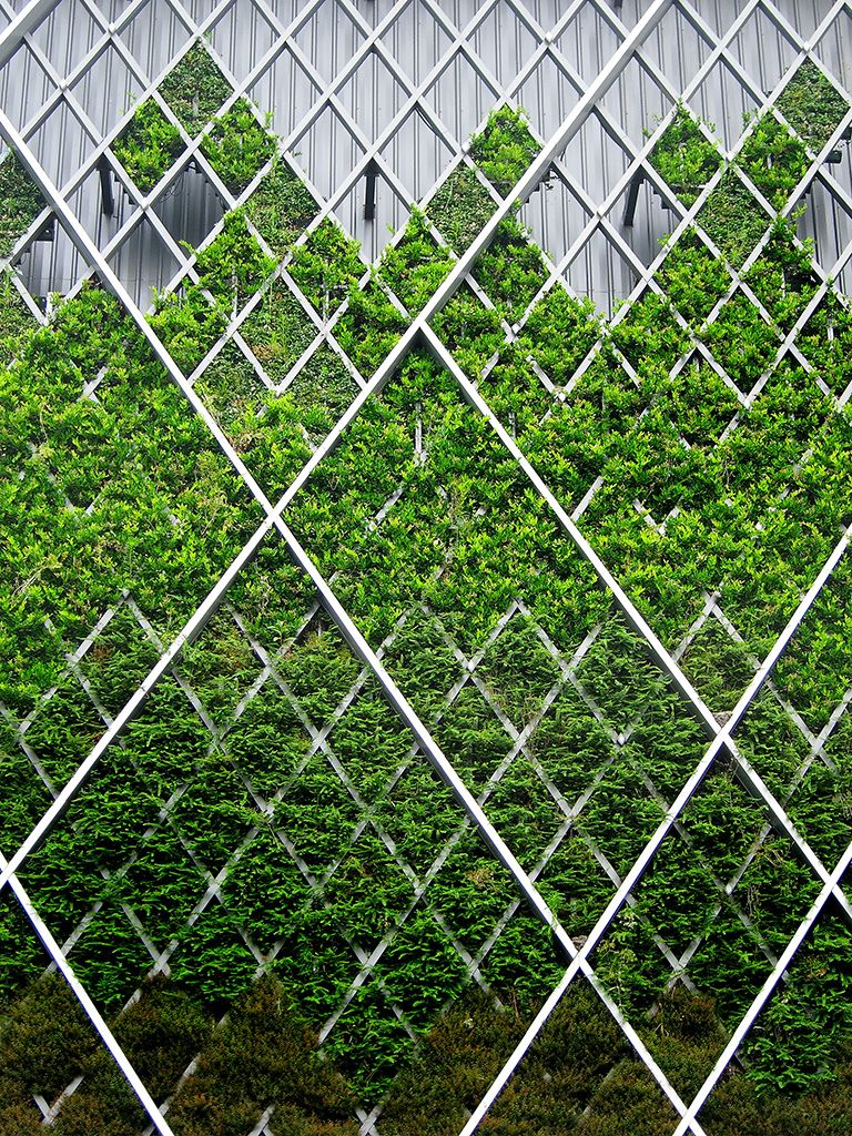 50 Green Wall Design Inspiration Is A Part Of Our Collection For Design  Inspiration Series.Green Wall Design Inspiration Is An Inspirational Series