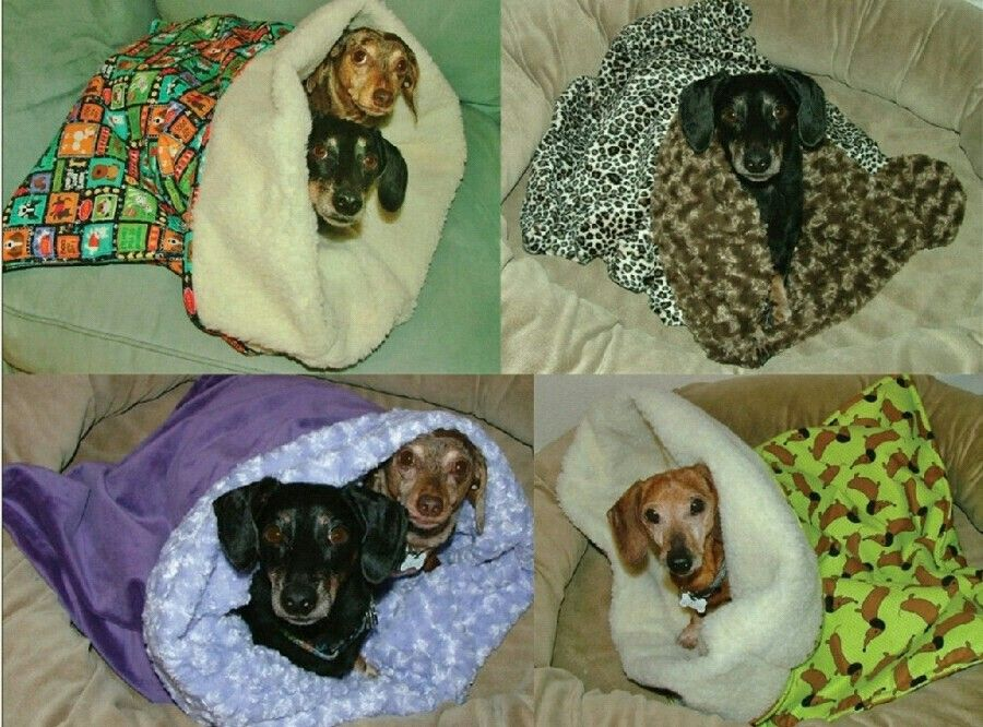They Love To Burrow Weenie Dogs Dachshund Weiner Dog