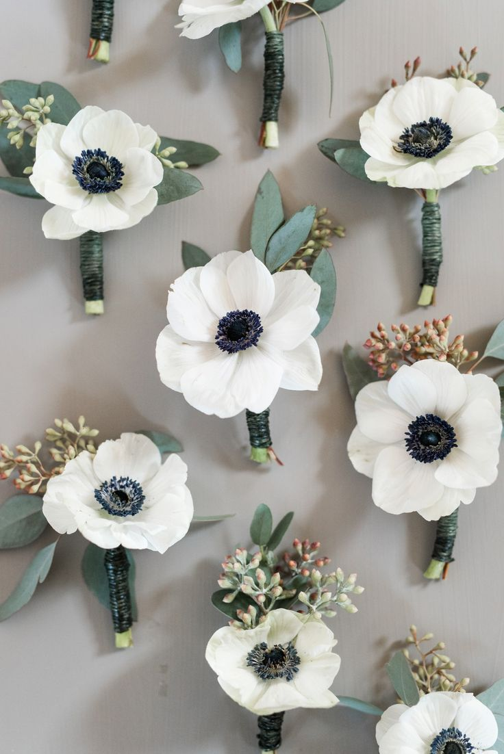 Image result for anemone carnation boutonniere happily ever after image result for anemone carnation boutonniere happily ever after pinterest wedding flowers wedding and wedding bouquets izmirmasajfo