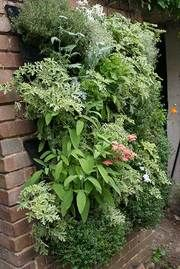 Looks like vertical gardening is the way to go!
