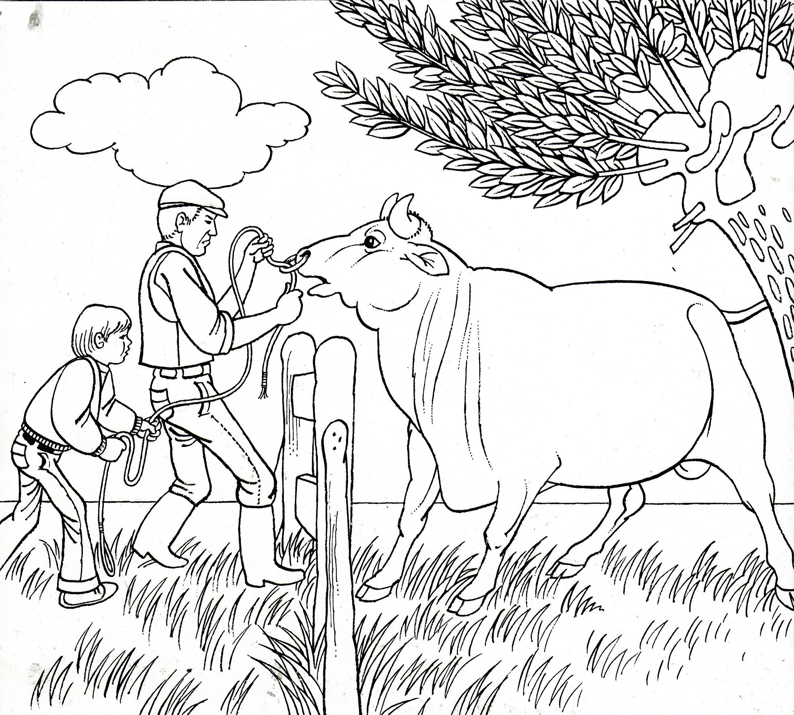 ub funkey coloring pages - photo#35