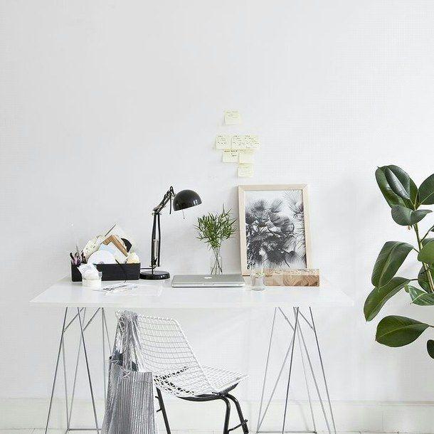 Cactus Clean Cute Decor Desk Y Organization Plant Tumblr White