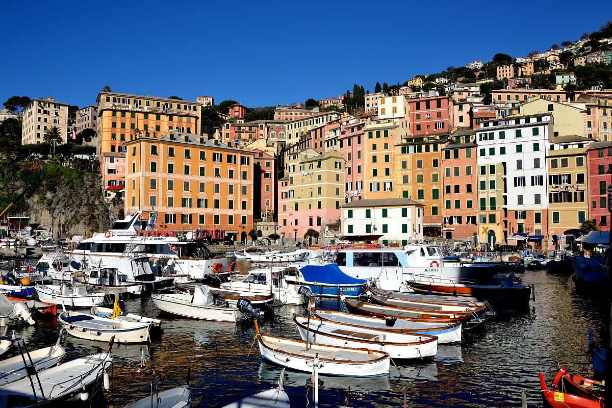 ITALY, THE HARBOR OF CAMOGLI, LIGURIA
