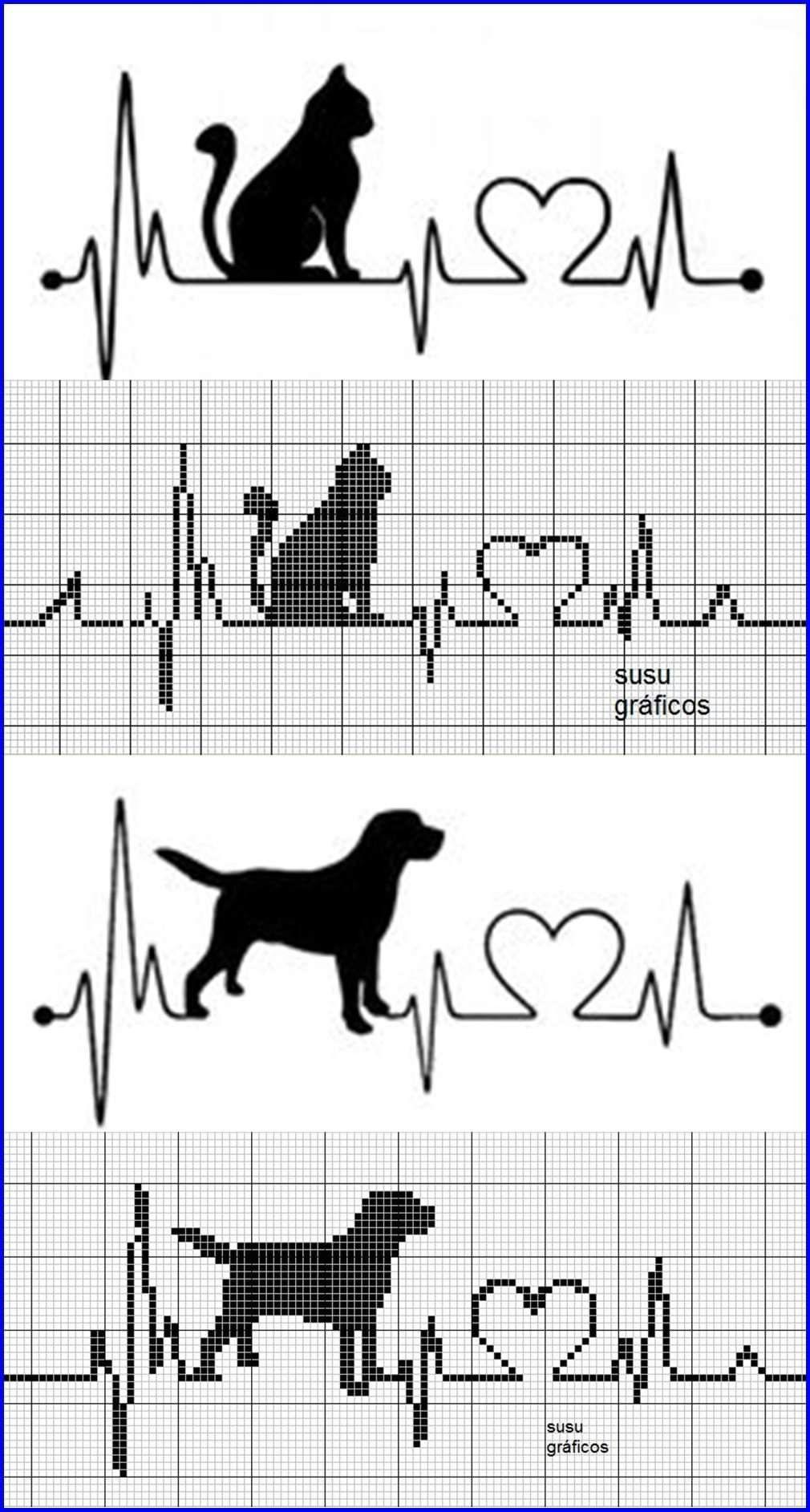 Photo of EKG cat dog