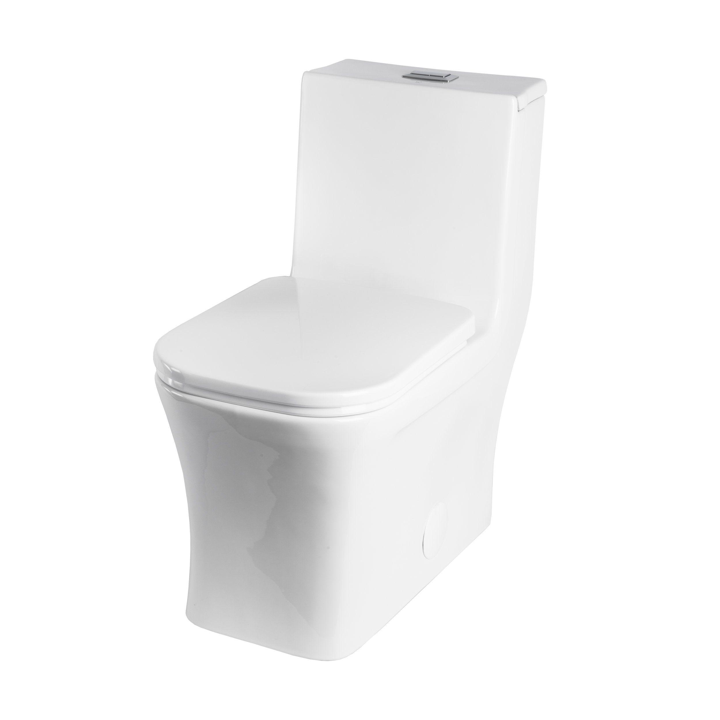 Bai 1007 Contemporary Toilet One Piece Dual Flush With Soft