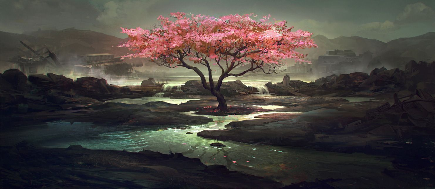 chinese mountains and cherry blossoms love coolvibe please share