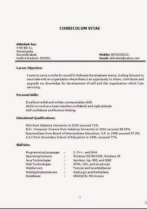 it cv samples sample template example ofexcellent cv resume